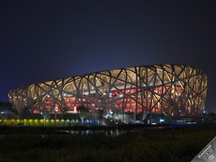 Birds' Nest at Night