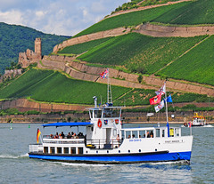 Rhein bei Bingen (Habub3) Tags: water river germany landscape deutschland photo vineyard nikon rhine landschaft rhein schiff burg weinberg bingen d300 burgruine ehrenfels viewonblack theunforgettablepictures theunforgettablepicture habub3