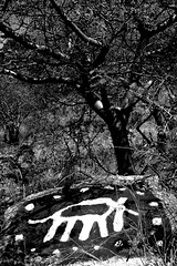 rock artwork & tree (pho_kus) Tags: