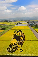Rice Art. (Hirosaki Japan).  Glenn Waters.  3,600 visits to this photo.  Thank you. (Glenn Waters in Japan.) Tags: japan aomori  hirosaki japon 108        inakadate d700 theunforgettablepictures colourartaward nikond700 earthasia  glennwaters nikkor2470mmf28gedafs riceart  daikurosama  84march7th 87march25th ricefieldart