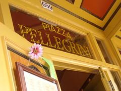 Plazza Pelligrini