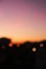 #day 22/? - stillness after the storm. (*northern star°) Tags: hmdiw day22 sunset bokeh pink stillness storm badnews headache period myniftyfiftyiscoming happyness tramonto rosa calma quiete tempesta cattivenotizie malditesta ciclo ilcinquantinoèinarrivo felicità eppicità canon eos450d digitalrebelxsi 1855is explore explored tititu northernstar° northernstar northernstarandthewhiterabbit northernstar°photography ©allrightsreserved usewithoutpermissionisillegal ifyouwannatakeitforpersonalusesnotcommercialusesjustask donotsteal