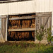 Amish Tobacco Barn Doors