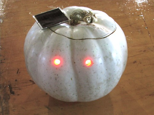 White LED pumpkin