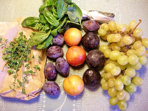 La Bottega della Frutta-Reggello-081001