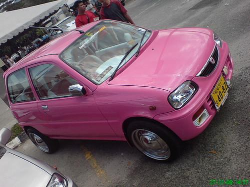 pink kancil paint