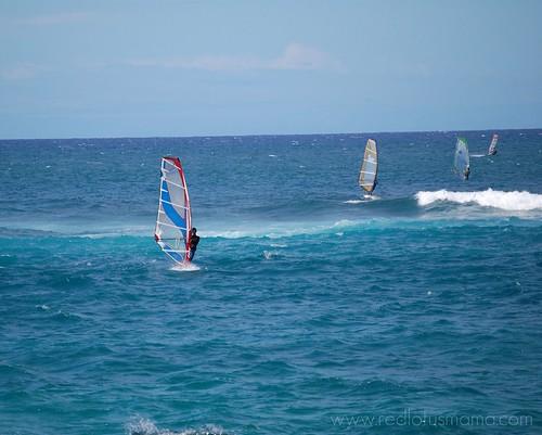 Hookipa windsurfers