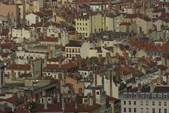 les toits de Lyon (genevieveromier) Tags: france lyon toits