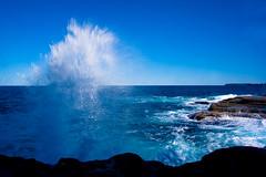 _MG_4610 (tomsstudio) Tags: sea beach sydney wave australia clovelly