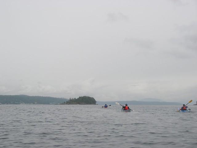 IMGP0331