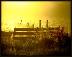 Heavens gate in Oberberg (NPP-publik_oberberg) Tags: morning light sun mist art yellow fog sunrise fence germany heaven creative dust oberberg naturesfinest heavensgate abigfave platinumphoto aplusphoto theunforgettablepictures goldstaraward thebestyellow vanagram artofimages bestcaptureaoi