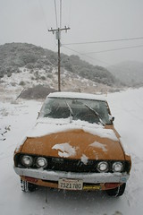 Butterscotch Face (kneesamo) Tags: snow pickup 1973 datsun butterscotch 620 l20b bulletside pl620
