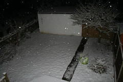 snow in the back garden