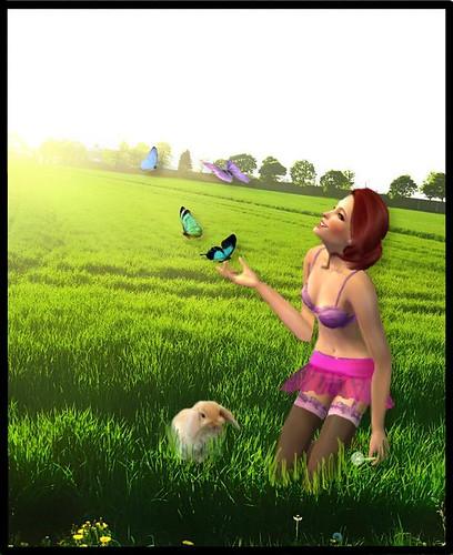 http://farm4.static.flickr.com/3027/3368249518_f6e86dcce4.jpg?v=0