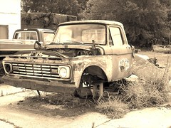 Old Ford on Blocks (Gerry Dincher) Tags: ford truck weeds rusty wreck 1963 cinderblocks crosscreek cumberlandcounty bluestarconstruction