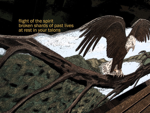 Flight Of The Spirit - 20/52