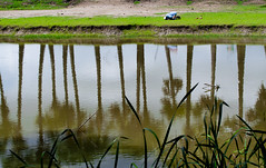 The Deeper meaning (Catch the dream) Tags: trees man reflection water grass pond pattern god muslim islam faith religion praying salat bangladesh prayers allah array medow namaz prostration kuakata namaaz gettyimagesbangladeshq2 performingsalaat muslimperformingnamaaz