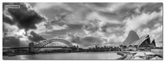 Sydney Harbour Wide