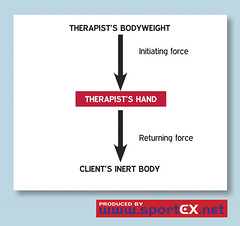 Forces of Newton's Third Law of Motion (sportEX journals) Tags: massagetherapy sportex sportsinjury sportsmassage sportexdynamics sportsrehabilitation therapistinjury