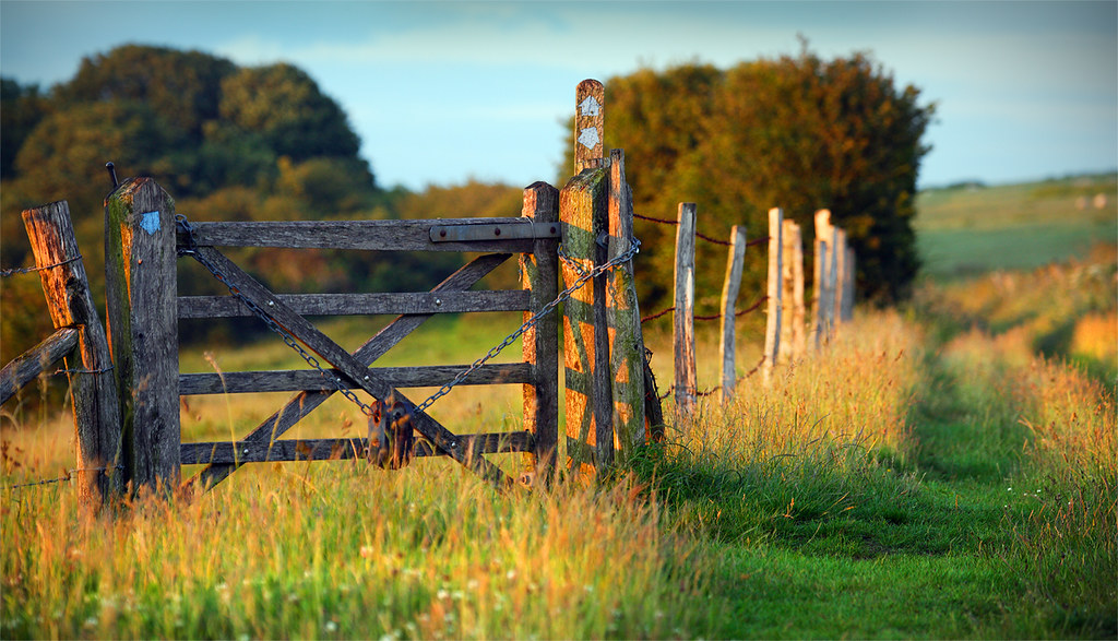Gate on South Downs