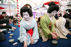 B A I K A S A I : Tea Ceremony (mboogiedown) Tags: travel people woman beauty festival japan asian japanese interestingness women kyoto shrine asia tea blossom traditional ceremony culture plum explore geiko geisha kitano kimono kansai katsura nodate tenmangu baikasai kanzashi oshiro kamishichiken i500 hanakanzashi umeshizu umechika