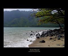 Scenic Hawaii - Oahu (Ani1967) Tags: ocean travel sea usa mountain tree beach nature rock landscape hawaii us scenery unitedstates pacific oahu framed unitedstatesofamerica scenic volcanic naturesfinest mywinners alemdagqualityonlyclub
