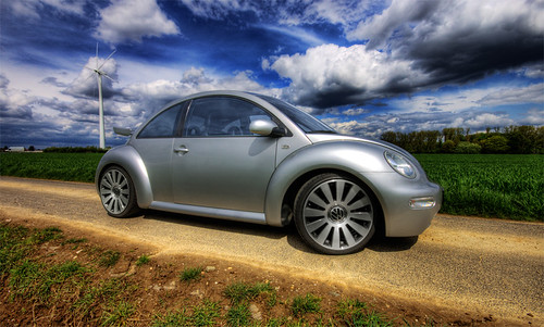 My Friends Beetle...
