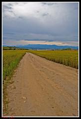 Entre trigo esta el camino (Neme G.) Tags: d50 nubes montaas trigo torrelaguna zamorano nemegon entretrigoestaelcamino caminoniokn