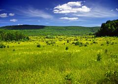 [フリー画像] [自然風景] [草原の風景] [アメリカ風景]        [フリー素材]
