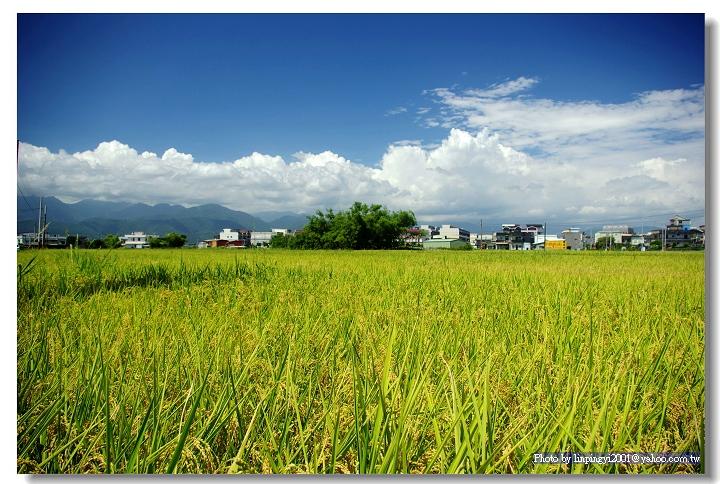 Taiwan,I-lan 隨拍