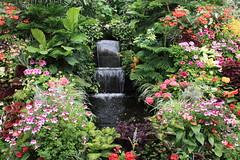 Butchart Gardens - by dherrera_96