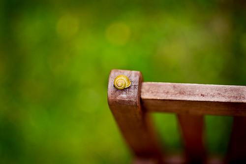 HBW - snail style.