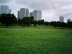 【写真】VQ3007で撮影した港パークの芝生
