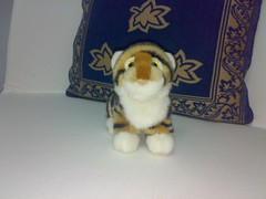 Irea's tiger cub 3