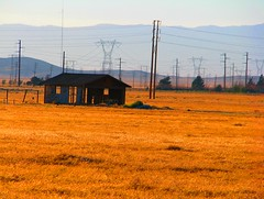 Transparent House (Rennett Stowe) Tags: california summer usa graffiti golden wheat structure oldhouse powerlines abandonedhouse lancaster telephonelines ghosttown lonely homestead shack transparent antelopevalley telephonepoles grassland desolate derelict ruraldecay grasslands desolation bucolic disrepair oldhome homesteading squatters abandonedhome rurallife wildgrass powerpoles goldenfields lancastercalifornia oldshack goldengrass oldranchhouse fixrupper oldranch hillsandvalleys summergrasses stateofdisrepair globalrecession bucolicsetting worldwideeconomiccrisis globaldepression thecomingdepression