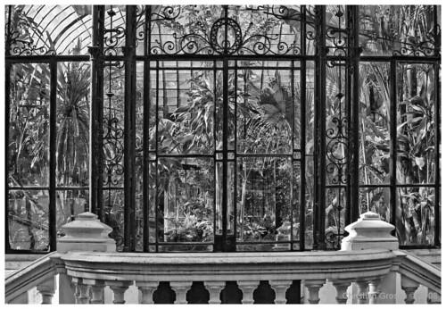 Jardín Botánico Buenos Aires