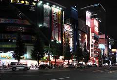 Lights of Akihabara