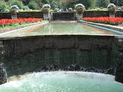 giardini terrazzati (Gaia D.) Tags: acqua ortobotanico villataranto giardiniterrazzati