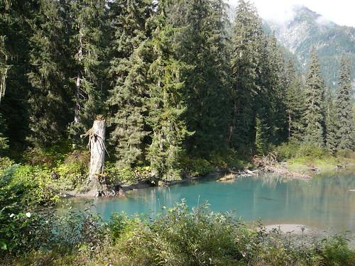 Lago donde vienen los osos a pescar salmon, los estuvimos esperando 2 dias y nada...