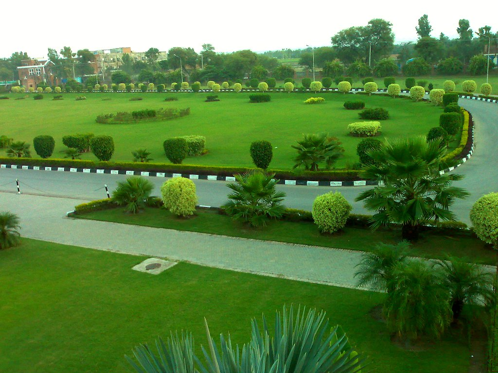 Image result for greenery in Pakistan