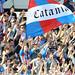 Calcio, Catania: ritiro Tessera del Tifoso