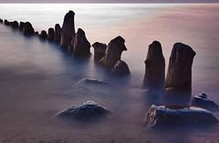 (chatursunil) Tags: wood sunset beach water evening long exposure dusk michigan logs douglas 2008 oval saugatuck impressedbeauty