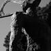 Escultura en homenaje al Rector David Stitchkin ... UdeC