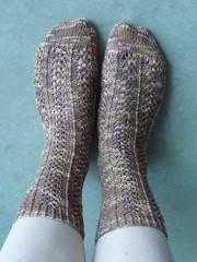 Hedera Socks (emmakat79) Tags: socks vegan knitting knit hedera crystalpalace knitty pandacotton