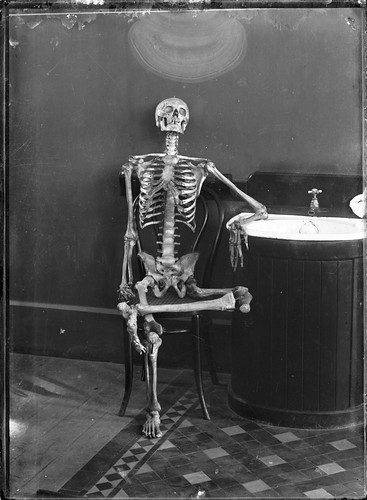 Portrait of an articulated skeleton on a bentwood chair asleep in class
