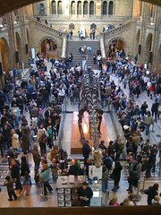 British Natural History Museum during half term
