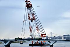 Seagulls Flying around a Crane that Can't Fly (ykanazawa1999) Tags: bridge japan tokyo construction crane seagull toyosu