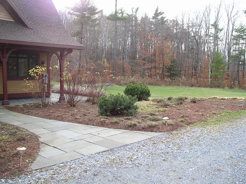 Bed clean-up w/cut back perennials and rejuvenated dogwoods
