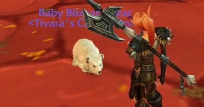 Tivara's Cub, 2