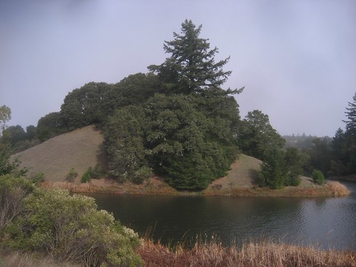 Horseshoe Lake, Skyline Ridge Open Space Preserve
